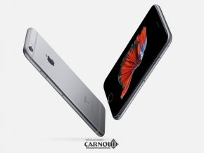 Carnoud_Apple_iPhone_6S_2.png