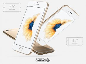 Carnoud_Apple_iPhone_6S_6.png