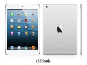 Carnoud_Apple_iPad_Air_5.png